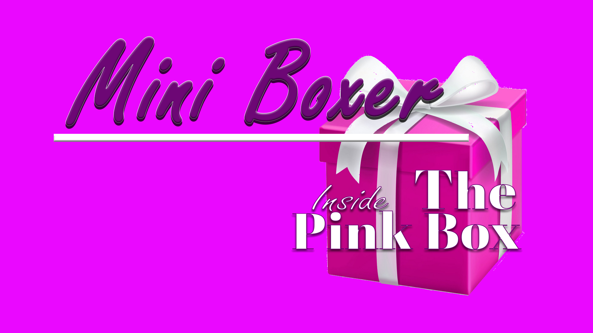Inside The Pink Box Mini Boxer